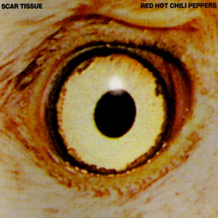 Red Hot Chili Peppers Scar Tissue