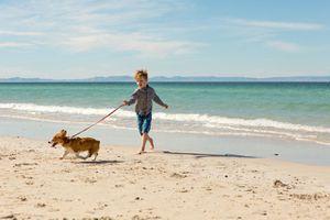 Young boy runs dog on beach, surf behind