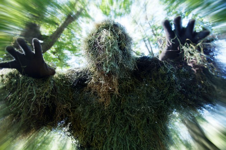 9 True Tales of Monsters and Cryptids