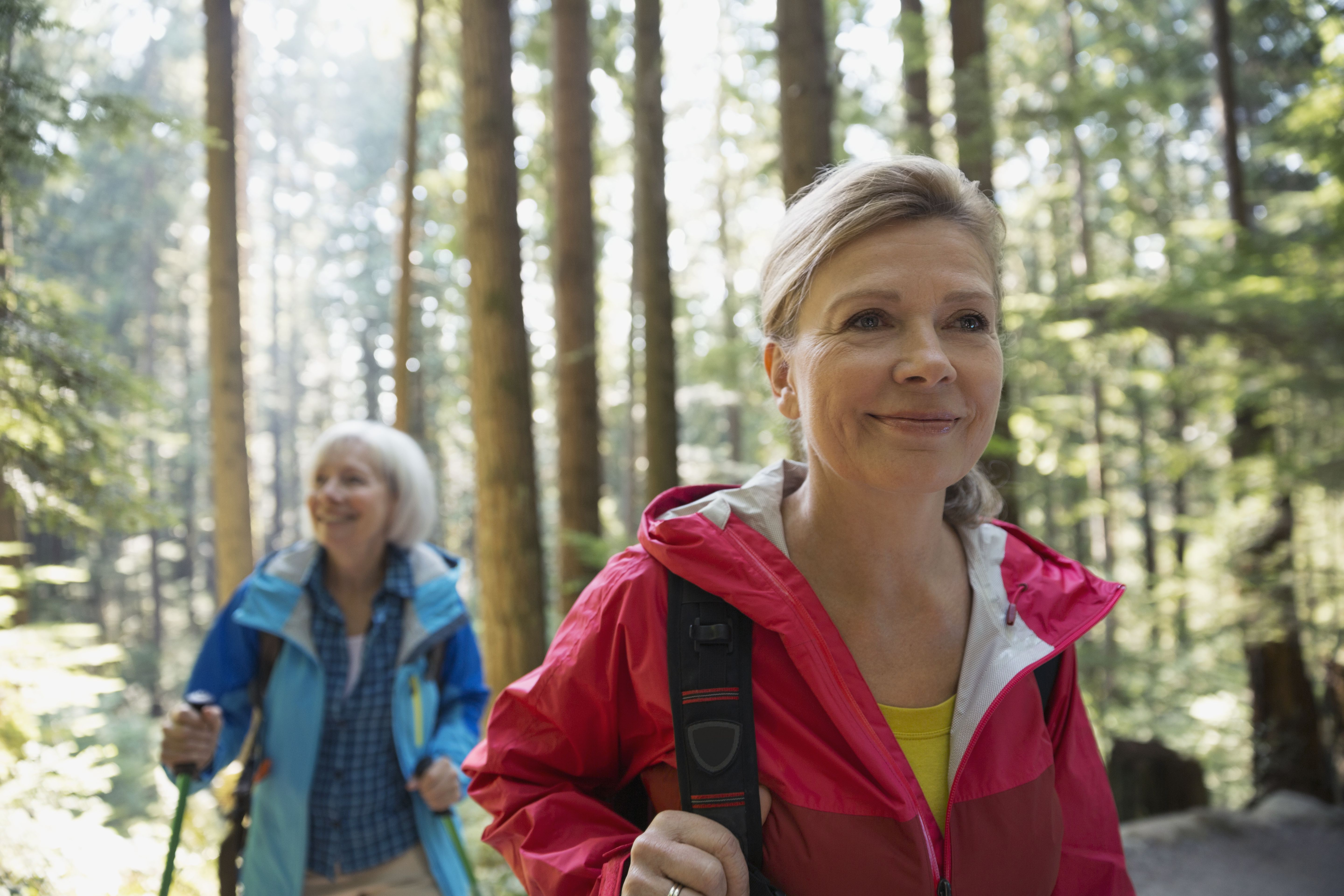 Smiling women hiking in sunny woods