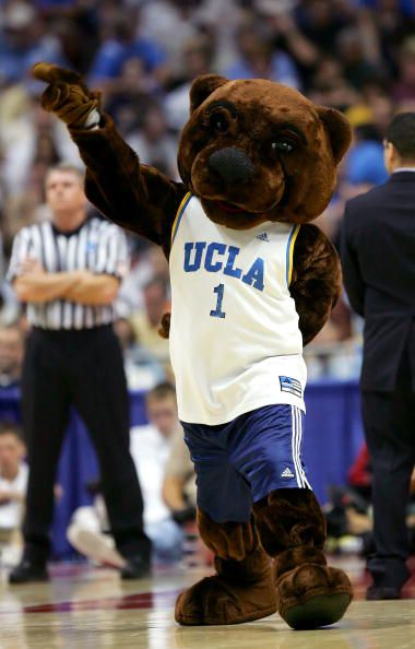 The UCLA Bruin