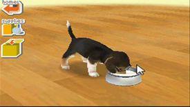 Dachshund puppy in Nintendogs: Dachshund & Friends