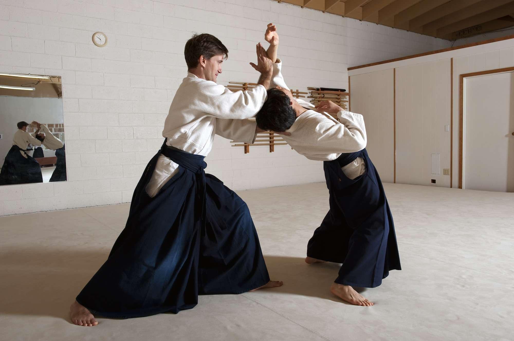 Men practicing aikido martial arts
