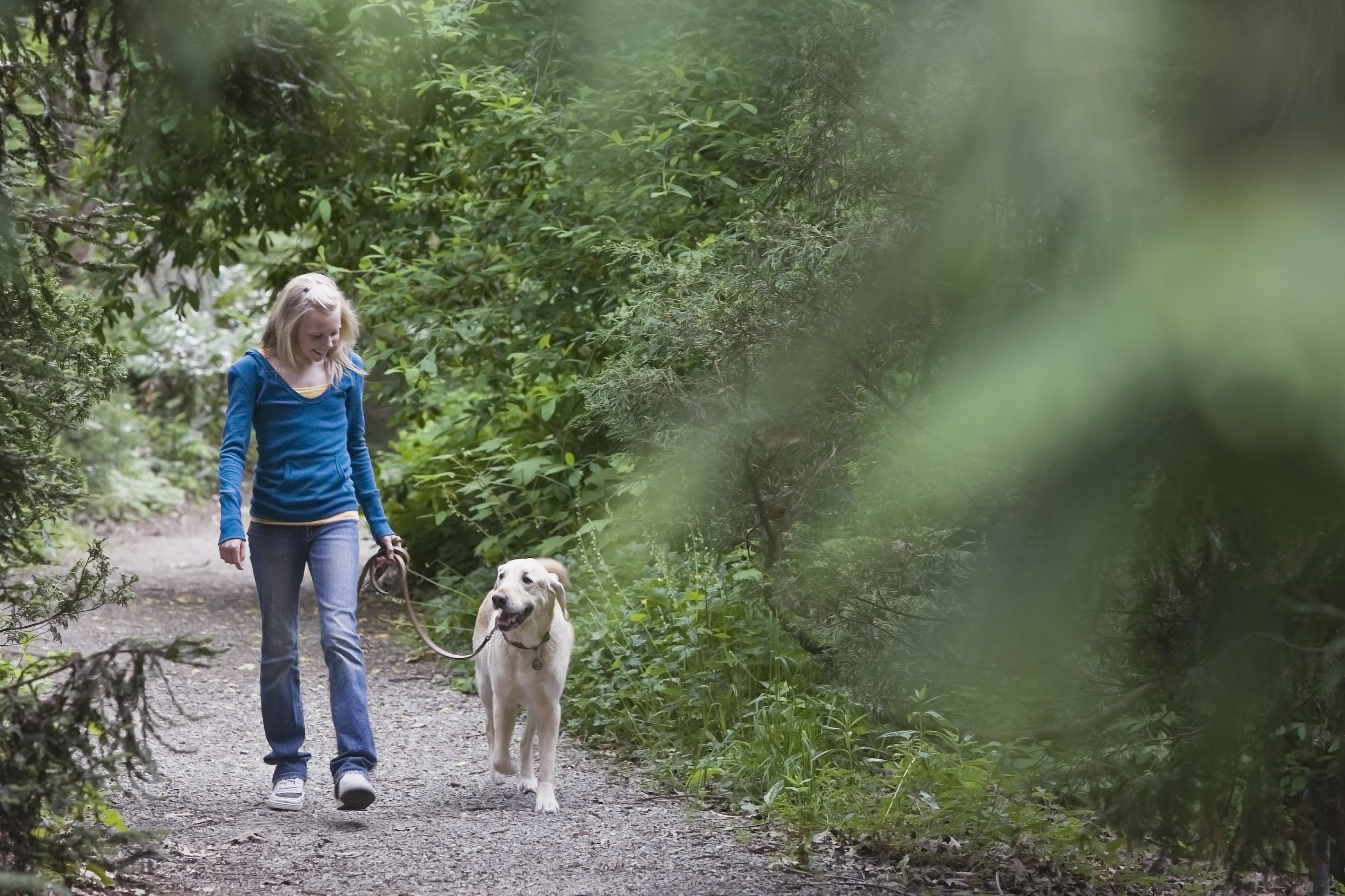 Girl walking dog on forest path