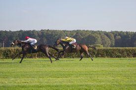 Jockeys Race Across a Field