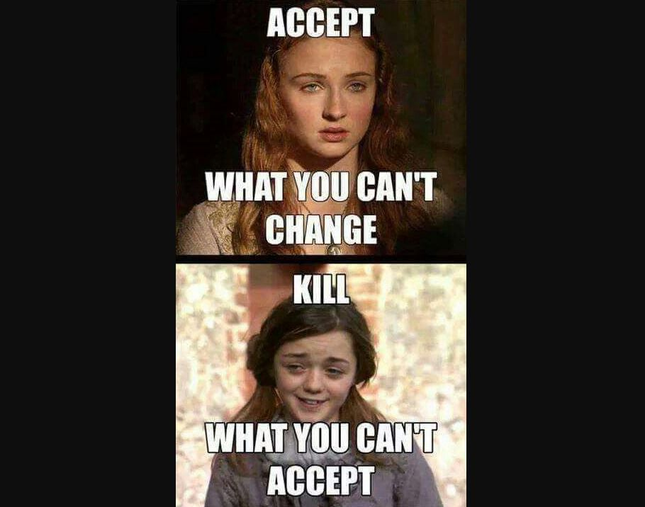 accept what your can't kill/kill what you can't accept meme