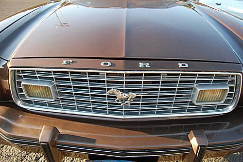 1975 Ford Mustang II Grille