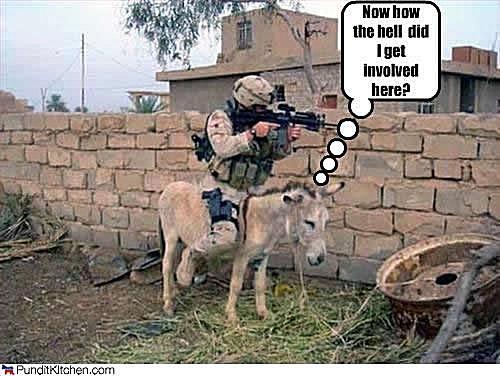 donkey military meme