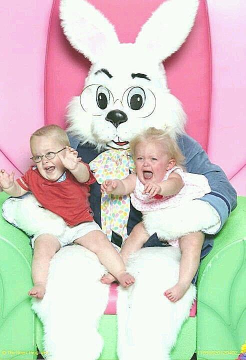 scary-bunny11.jpg