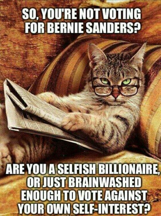 Voting for Bernie Sanders