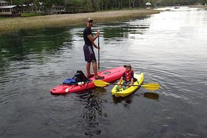 Paddleboarding the Rainbow River
