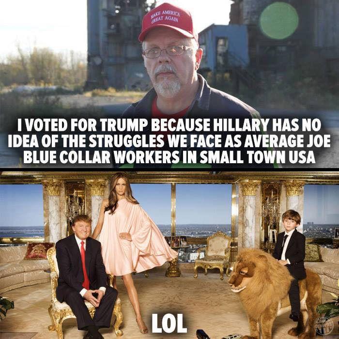 Average Joe - Trump meme