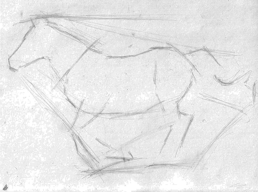 Finalizing the structure of the horse sketch.