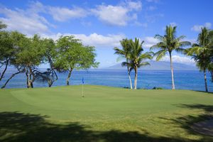 The green on a golf course in Hawaii