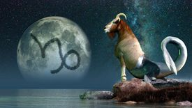 Capricorn in Astrology