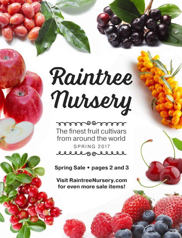 The Raintree Nursery Spring 2017 catalog