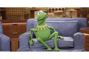 Shocked Kermit