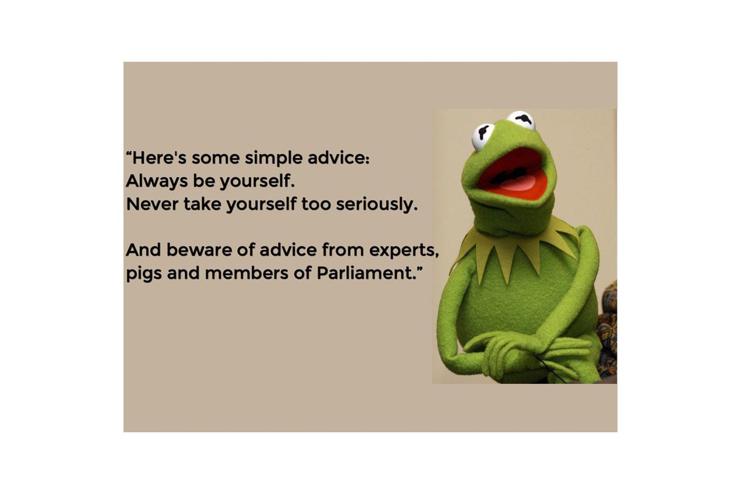 Beware of advice from experts, pigs and members of Parliament.