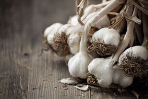 Bunches of garlic