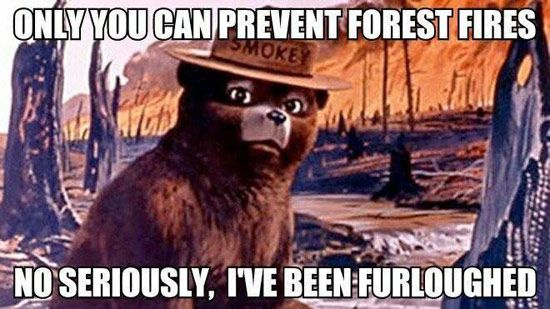 Smokey the Bear Government Shutdown Meme: Only you can prevent forest fires