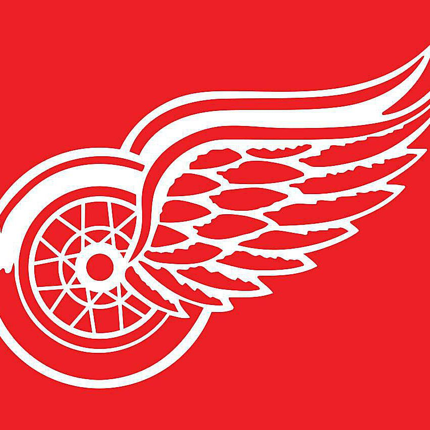 best sneakers 932a7 b36af Origins of the Detroit Red Wings Name and