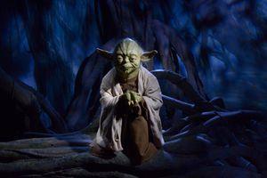 Yoda wax figure at Madame Tussauds