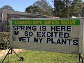 Wet our plants pun