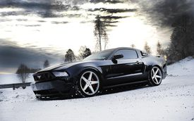 Black Mustang, wintry day