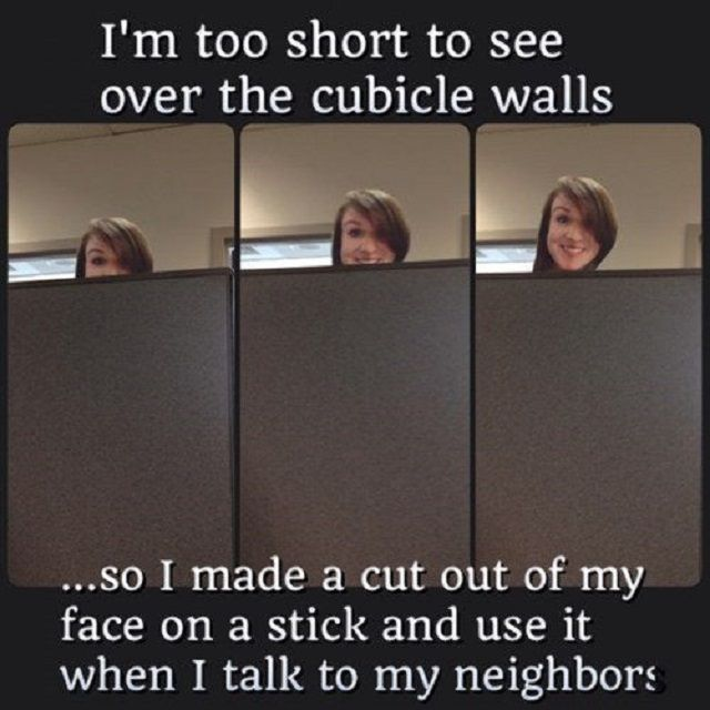 woman uses cardboard face on a stick to see over wall