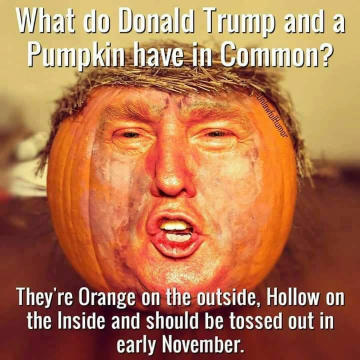 Frightfully Funny Halloween Memes and