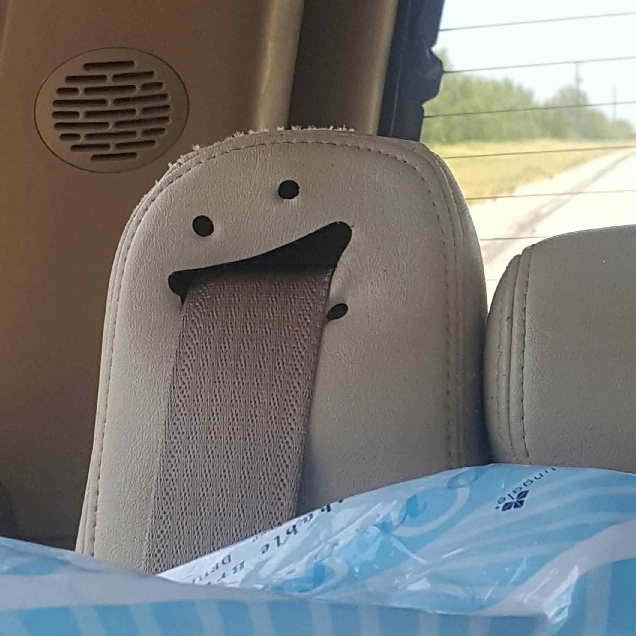 seatbelt that looks like a face
