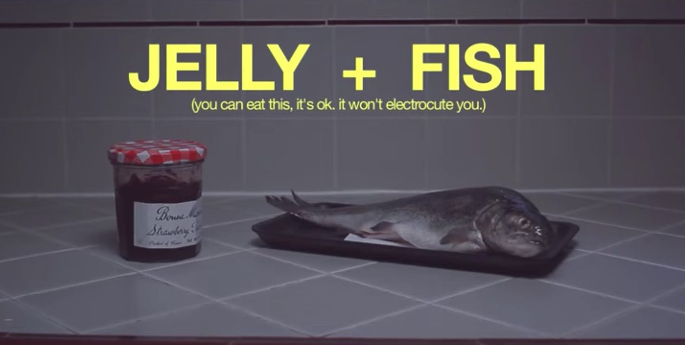 """Screenshot of YouTube video """"Jellyfish"""""""