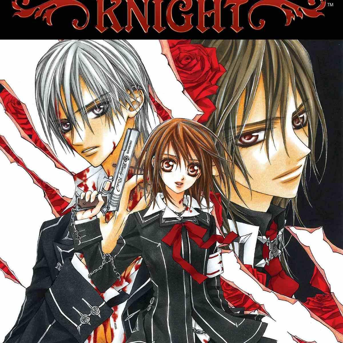 Vampire Knight Vol. 1 cover.