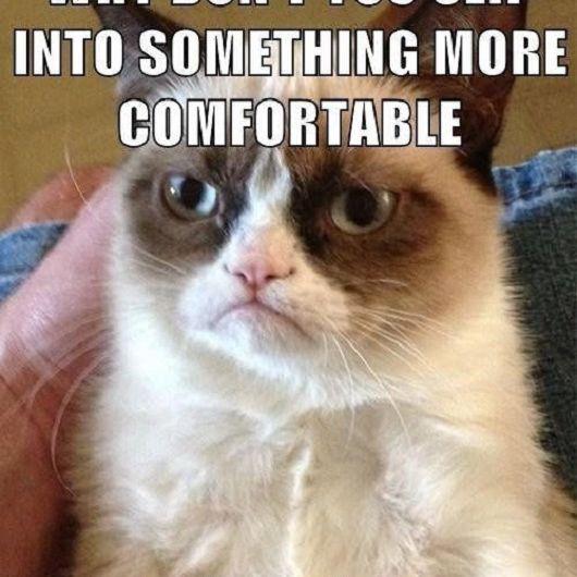 18 Best Grumpy Cat Memes Ever