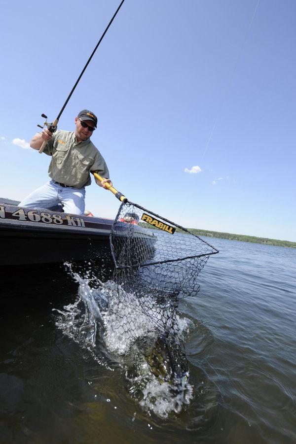 Landing A Walleye