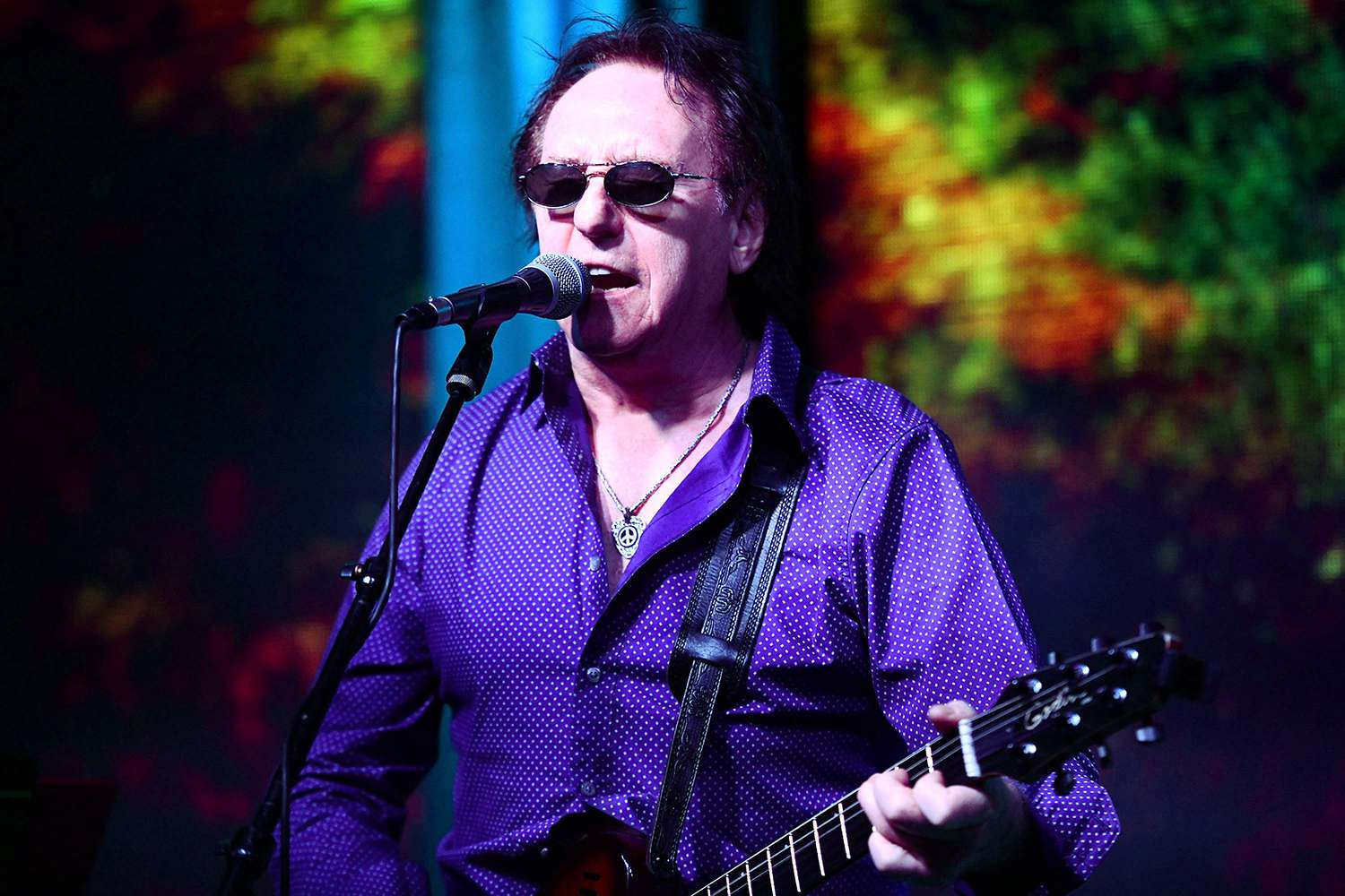 Denny Laine In Concert