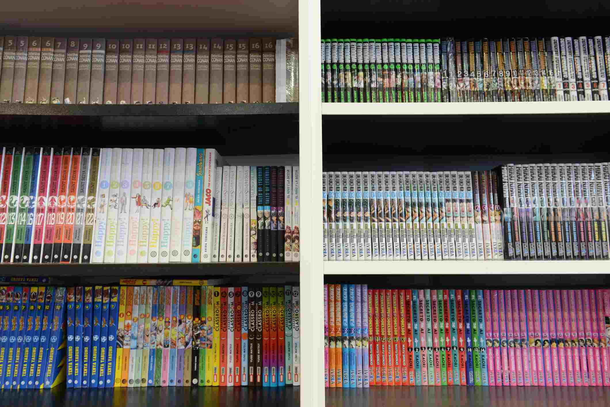 shelves of manga