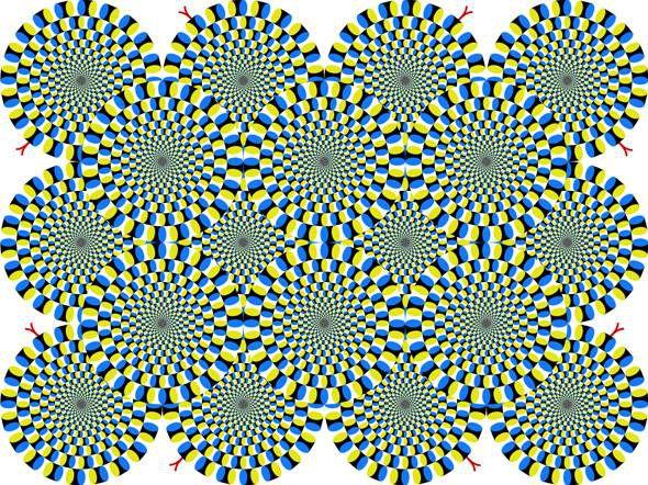 Akiyoshi Kitaoko illusory art