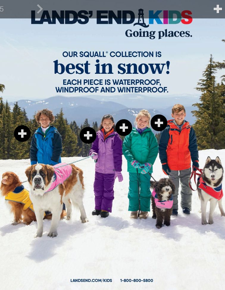 A group of kids and dogs standing in the snow on the cover of the Lands End Kids catalog