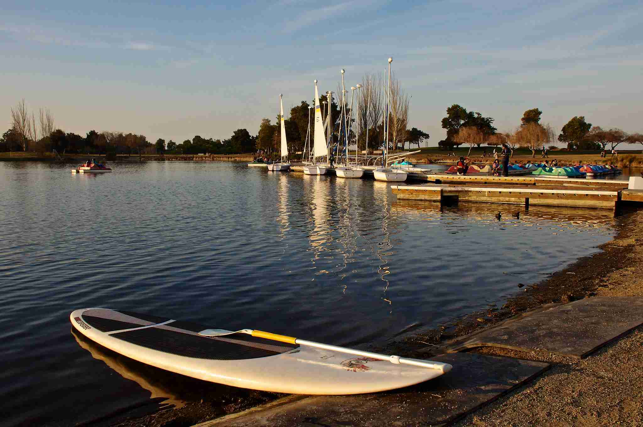 Paddleboard at Shoreline Lake