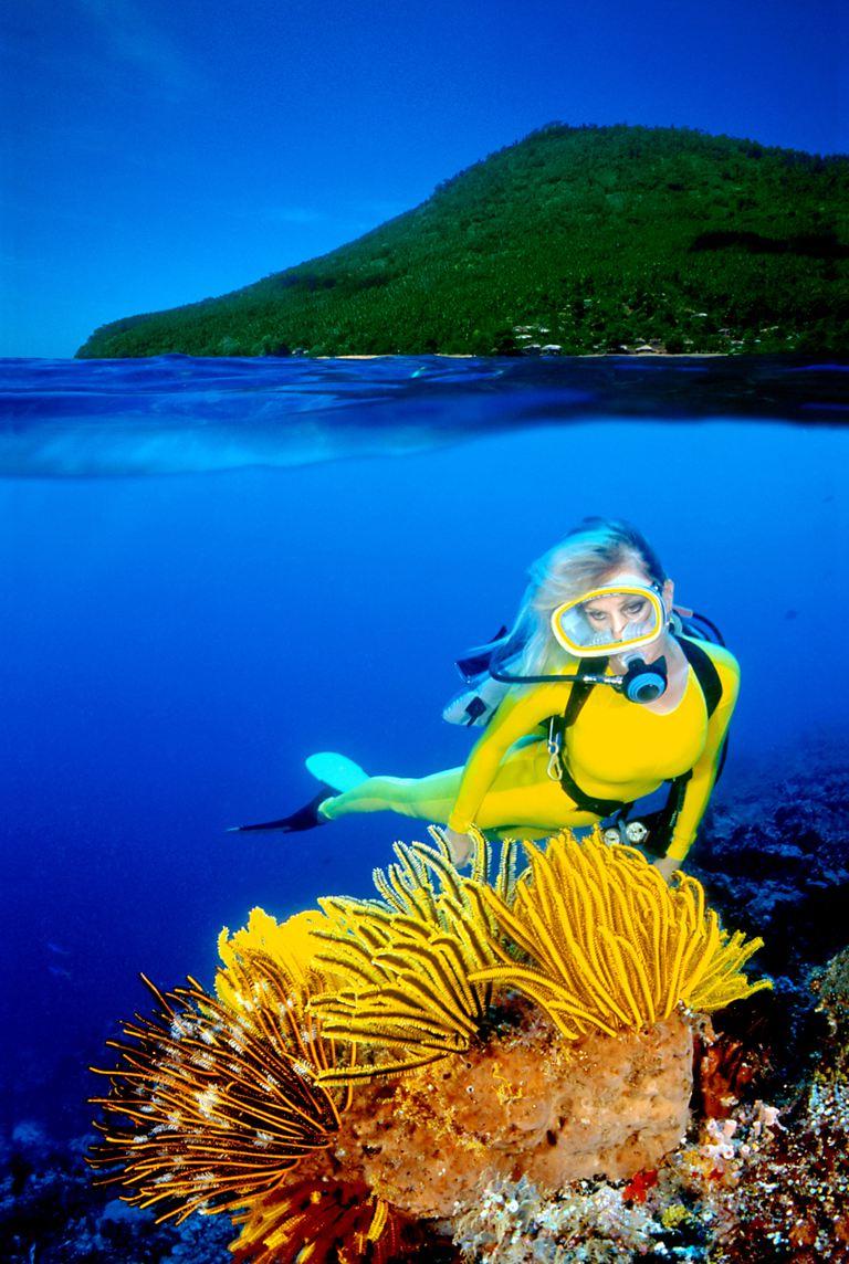 Scuba Diver Explores the Ocean