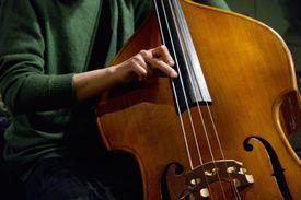 Upright Bass Jazz Instrument