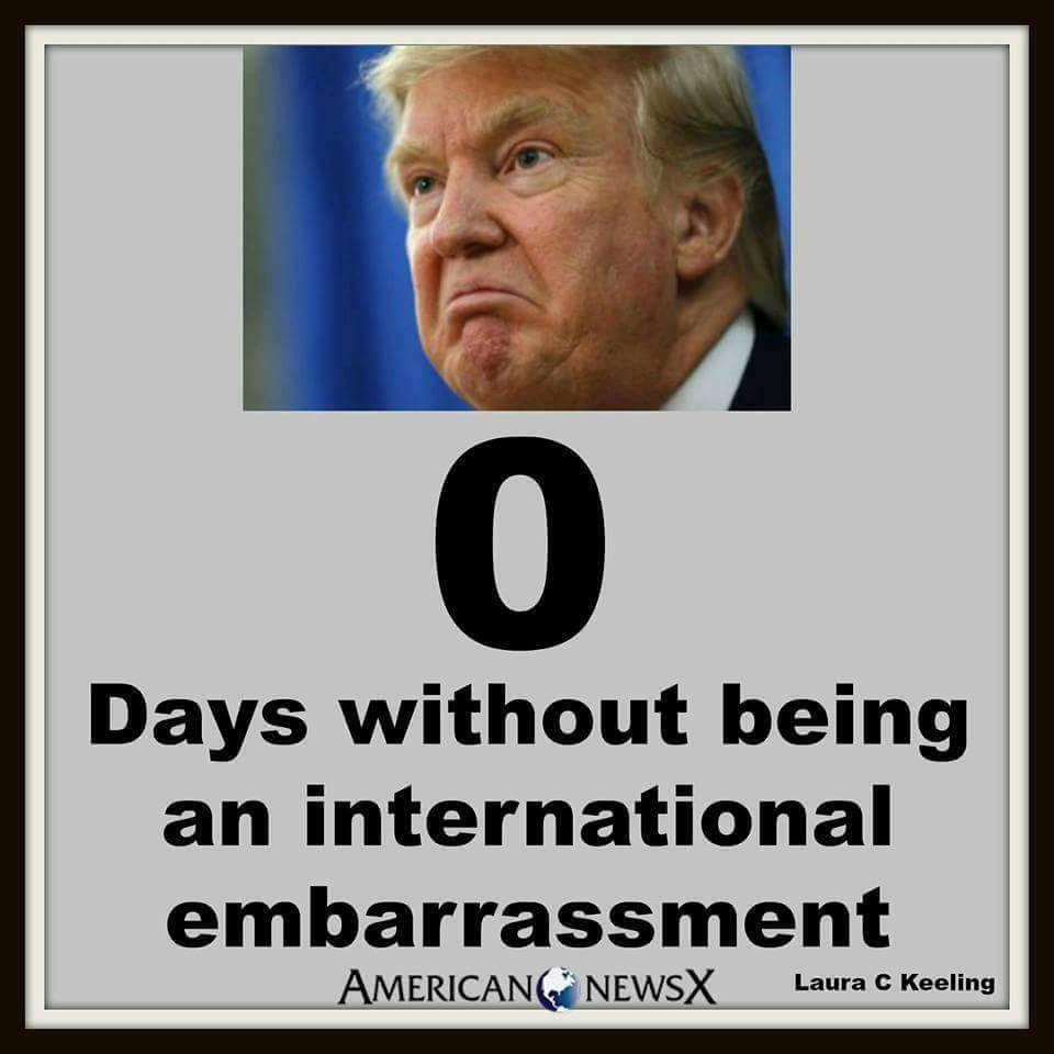 Embarassment - Trump meme