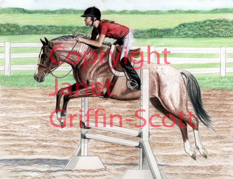 The competed drawing of horse and rider showjumping