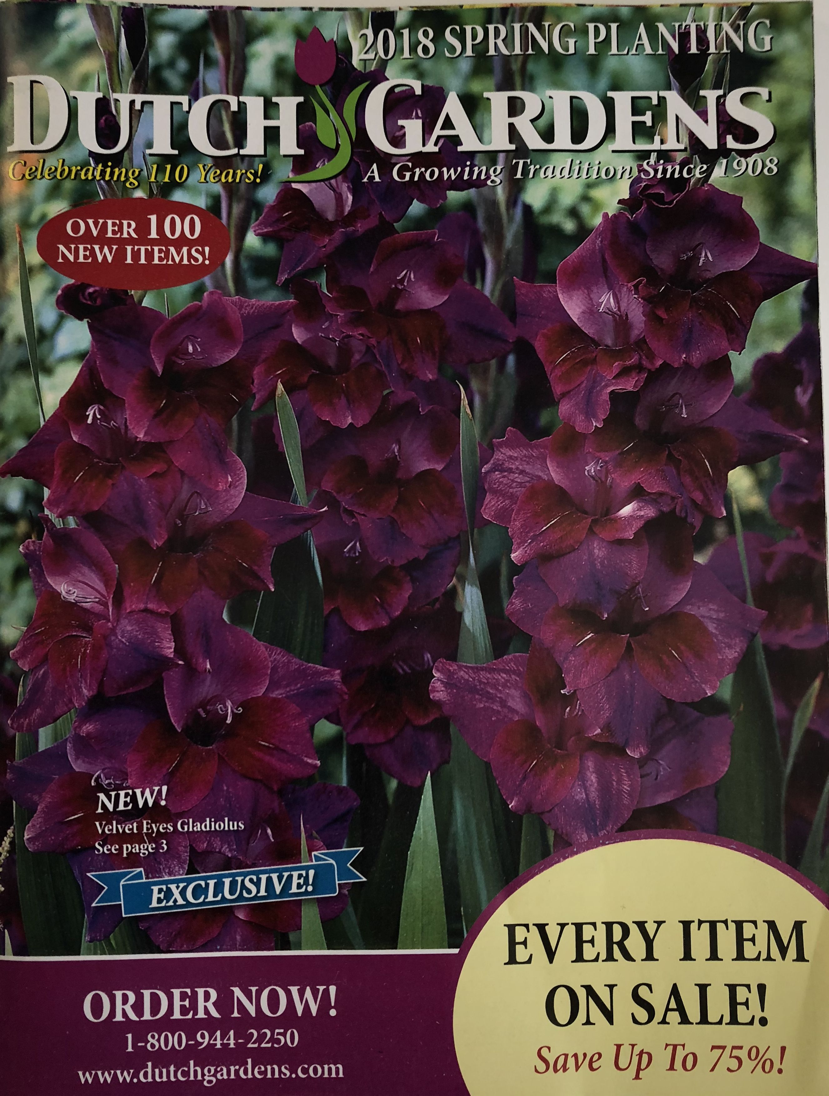 The Dutch Gardens 2018 catalog