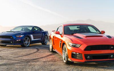 Jumpin' Jackrabbit: Shelby's Terlingua Mustang Returns!