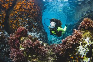 Woman scuba diving in Spain amongst coral.