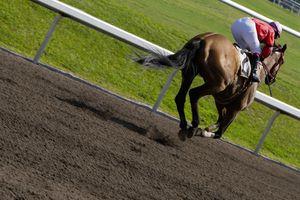 Jockey riding a horse in a horse race
