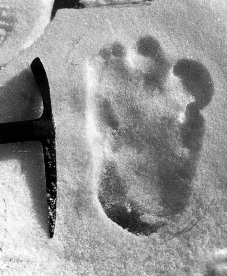 Yeti footprint