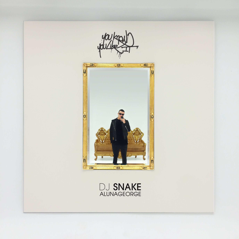 DJ Snake and AlunaGeorge - You Know You Like It